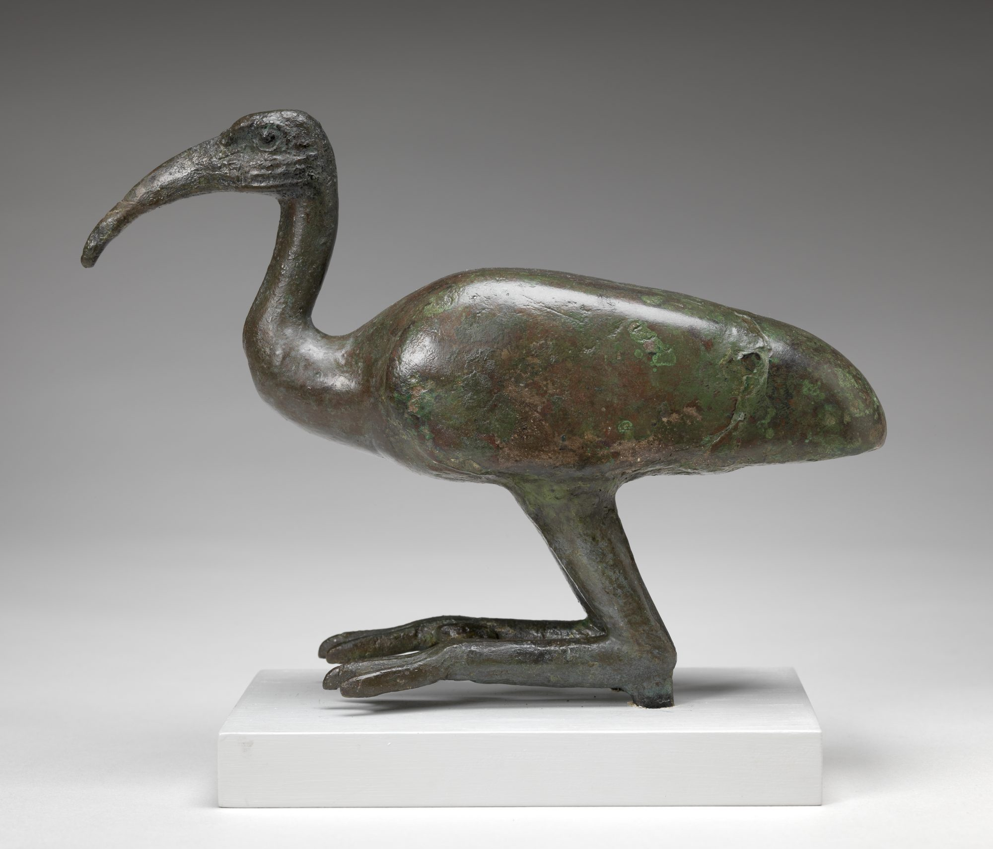 Egyptian, 26th Dynasty. Ibis, 662–525 BC