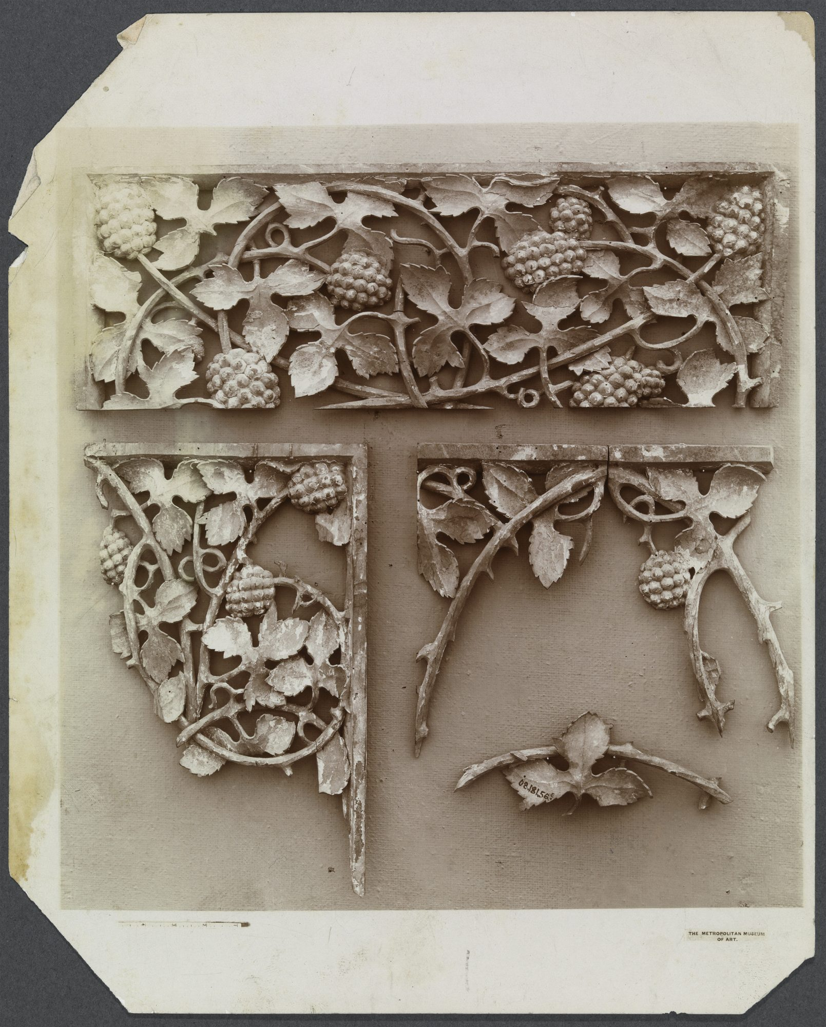 Unknown artist, The Metropolitan Museum of Art (serial no. 08.181.56E) Grapevine Fragments, 19th–20th century. Photograph, 10 x 8 1/8 in. Williams College Museum of Art, Prendergast Archive and Study Center, Gift of Mrs. Charles Prendergast, A.1.453