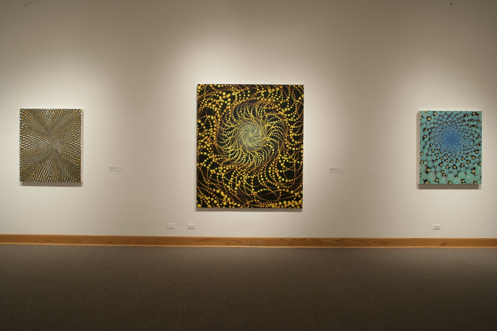 Barbara Takenaga, installation photo by Arthur Evans.