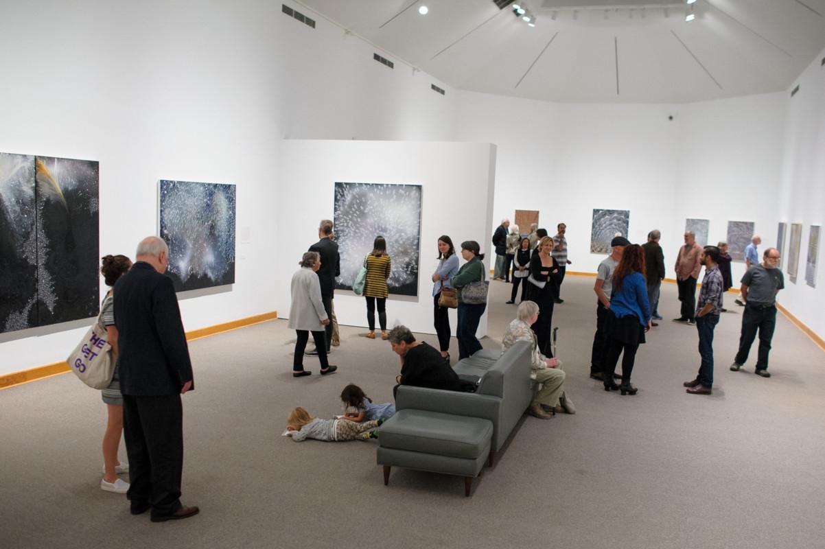 Barbara Takenaga Installation View 2017, Photo by Arthur Evans