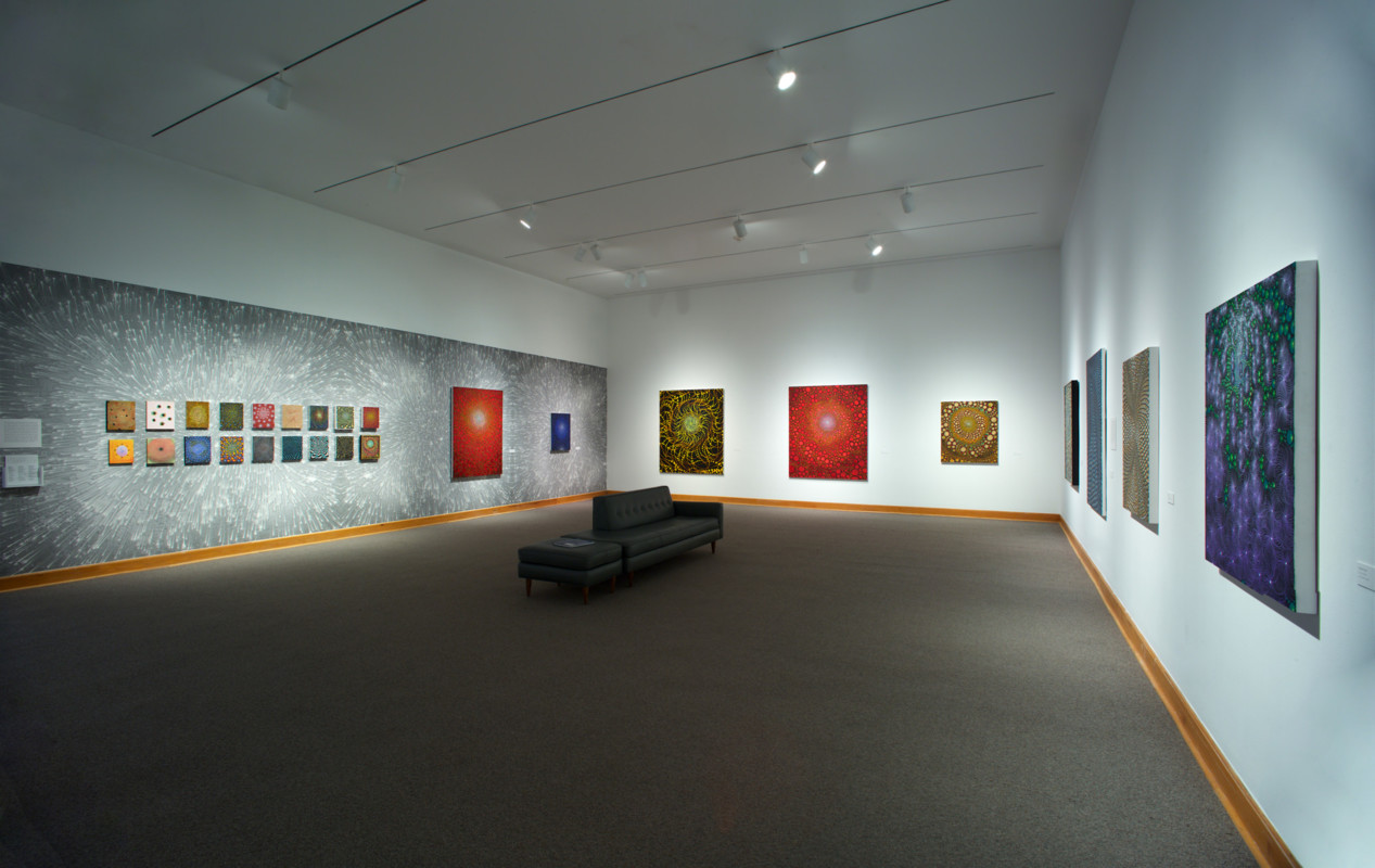 Barbara Takenaga Installation View 2017, Photo by Arthur Evans